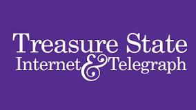 treasure state internet logo